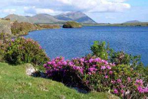 Lough Fee Connemara